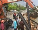 Đóng cọc sắt gia cố bờ kè Thành cổ Quảng Trị