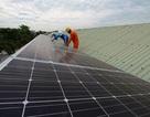 """Điện mặt trời phát triển """"nóng"""", Thủ tướng yêu cầu Bộ Công Thương giải trình"""