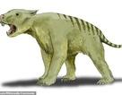 """Lần đầu tiên phát hiện hoá thạch hoàn chỉnh của loài sư tử """"có túi"""" ở Australia"""