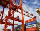 """Vì sao Cảng Quy Nhơn lập kỷ lục lượng hàng qua cảng sau cổ phần hóa """"bất thường""""?"""
