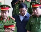 Vụ đánh bạc gần 10.000 tỷ: 'Cựu tướng Phan Văn Vĩnh xin thi hành án'