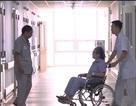 Tỷ lệ bệnh nhân nằm ghép giảm ngoạn mục xuống 3 lần