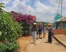 Đà Lạt: Khách sạn tăng giá, khan hiếm phòng dịp Tết Dương lịch 2019