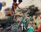 """Hàng chục khách nước ngoài """"mướt mồ hôi"""" nhặt rác trên bãi biển Nha Trang"""
