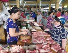 Nha Trang: Chủ lò mổ dừng phản đối, thị trường thịt heo sôi động trở lại