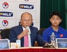 VPMilk ở đâu trong ngày thầy Park đưa bóng đá Việt Nam lên đỉnh AFF Cup?