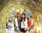Sinh viên hào hứng với khu vườn Giáng sinh lộng lẫy như ở trời Âu