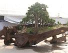 Khối ngọc nặng 16 tấn: Đại gia xẻ làm sập nằm cho mát lưng