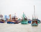 """Luật Thủy sản ra đời, cơ hội cho ngành thủy sản... gỡ """"thẻ vàng""""!"""