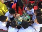 Học sinh, phụ huynh háo hức với Ngày hội đọc sách