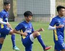 Đội tuyển Việt Nam hăng say tập luyện sau chức vô địch AFF Cup 2018