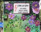"""Những tủ điện """"nở hoa"""" ở Hà Nội"""