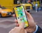 Nhiều iPhone bị mất kết nối di động sau khi nâng cấp lên bản iOS 12.1.2 mới nhất