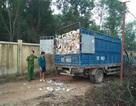 Bắt 7 xe tải chở rác thải từ Bình Dương sang Đồng Nai đổ trộm