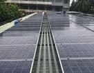 Đà Nẵng lắp đặt thí điểm hệ thống điện năng lượng mặt trời