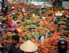 Hàng loạt dấu mốc lịch sử được xác lập tại Bắc Giang năm 2018