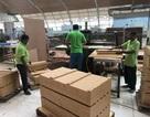 Lao động Nghệ An sẽ được tuyển dụng miễn phí làm việc tại Malaysia