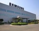 Samsung Việt Nam có Tổng giám đốc mới