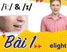 Học tiếng Anh: Hướng dẫn cách phát âm chuẩn /i:/ và /ɪ/ vừa đúng vừa hay