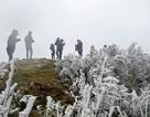 Du khách thích thú với băng tuyết phủ trắng đỉnh Mẫu Sơn