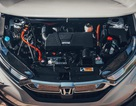 Honda sẽ dừng bán xe diesel tại châu Âu