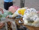 Bé trai 4 tháng tuổi bị đặt nằm trên thùng rác giữa phố Hà Nội