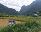 """Bộ Nông nghiệp """"chỉnh"""" việc quy hoạch rừng của tỉnh Thái Nguyên"""