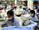 Qua 11 tháng: Hơn 1,1 triệu lao động được doanh nghiệp đăng ký