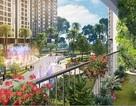 Vay mua nhà bằng… tiền thuê nhà tại Imperia Sky Garden