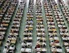 """Quan chức Trung Quốc """"ngã ngựa"""" sau bê bối sửa điểm thi đại học"""