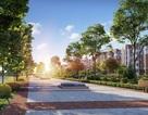 Tìm về không gian sống xanh tại thành phố biển Hạ Long