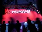 """Chính phủ Nhật Bản có thể """"tẩy chay"""" thiết bị viễn thông Trung Quốc"""