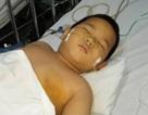 Thương cháu bé 3 lần cắt nội tạng vẫn chưa thoát khỏi tử thần