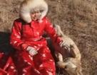 Cô gái 20 tuổi làm nghề nuôi dạy chó sói