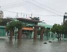 Đà Nẵng: Ngày mai, học sinh trường THPT Nguyễn Hiền và Tiểu học Phan Đăng Lưu nghỉ học