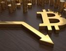 Bitcoin rớt giá thảm hại, thổi bay 44 tỷ USD trong một tháng