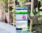 Xperia XA2 mới nhất của Sony bất ngờ xuất hiện tại Việt Nam