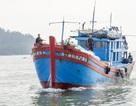 Ngư dân trắng tay vì gặp nạn trong chuyến biển cuối năm