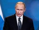 Tổng thống Putin hủy hàng loạt sự kiện vì vấn đề sức khỏe