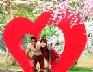 Bạn trẻ háo hức với Valentine lãng mạn ở phố cổ Hội An
