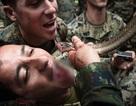 Binh sĩ uống máu rắn, ăn bọ cạp trong cuộc tập trận lớn nhất châu Á