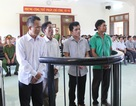 Phú Yên kỷ luật nhiều cán bộ chủ chốt huyện Đồng Xuân