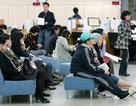 Tỷ lệ thất nghiệp của Hàn Quốc vẫn ở mức cao