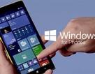 Microsoft bóng gió từ bỏ mảng smartphone chạy Windows