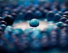 In 3D gel thông minh biến đổi hình dạng