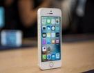 iPhone SE 2 sẽ có màn hình 4,2-inch, ra mắt vào tháng 6 tới đây