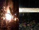 Chủ đi vắng, nhà bị lửa thiêu rụi trong đêm