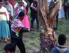 Du khách tử vong khi tham dự lễ hội chặt cây đầu năm