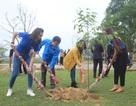 Tuổi trẻ Quảng Trị trồng cây xanh, chăm sóc nghĩa trang liệt sĩ dịp đầu Xuân