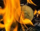 """Hơn 100 tỷ USD bị """"quét sạch"""" khỏi thị trường tiền ảo trong 24 giờ qua"""